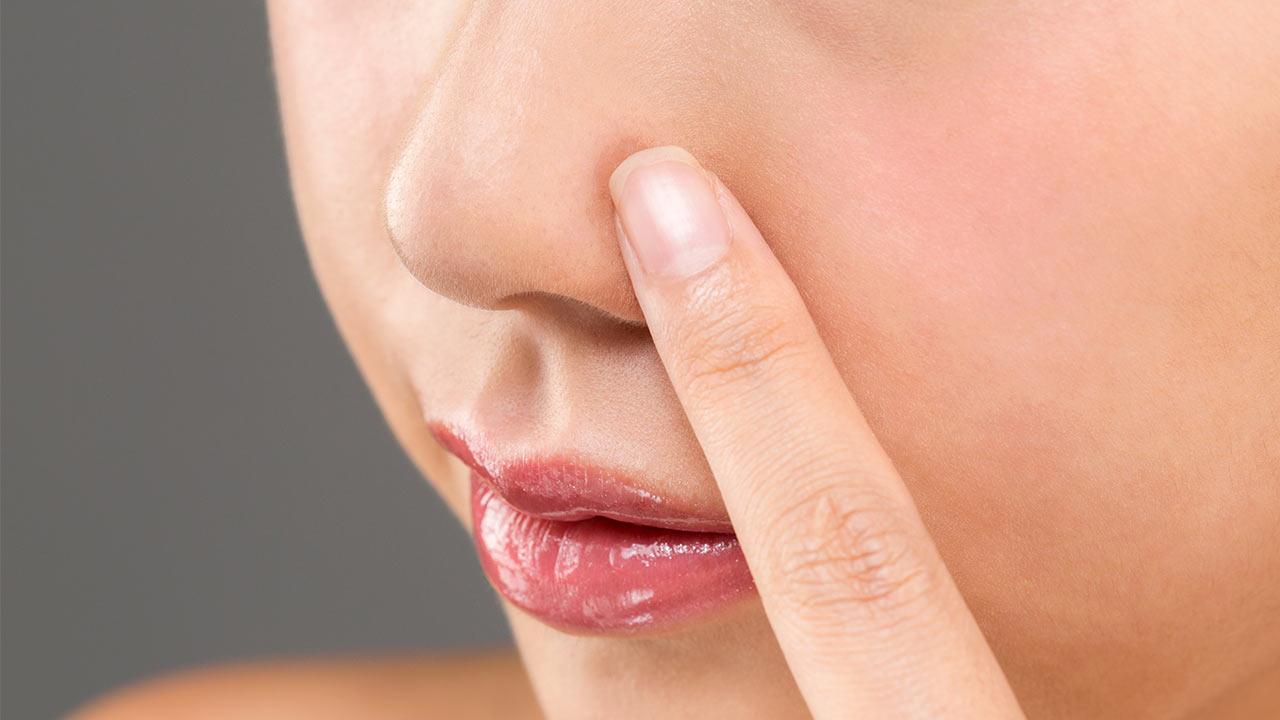 estructura interna de la nariz